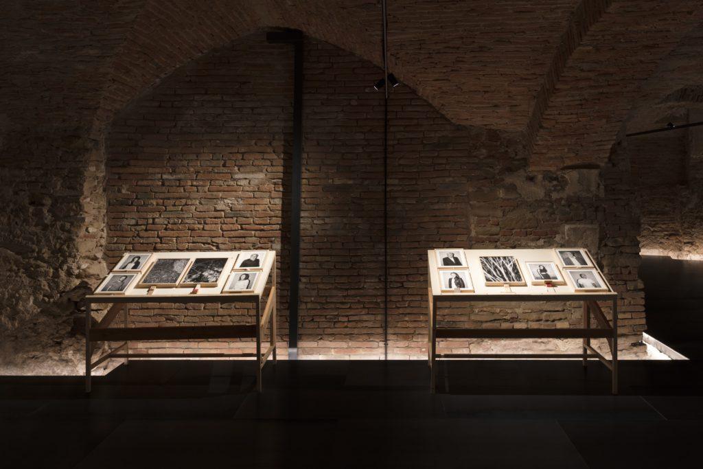 Bologna Portraits